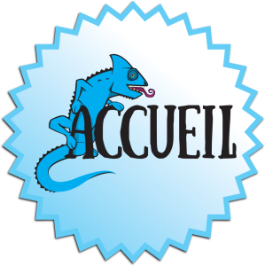 IREP-Patch-Accueil